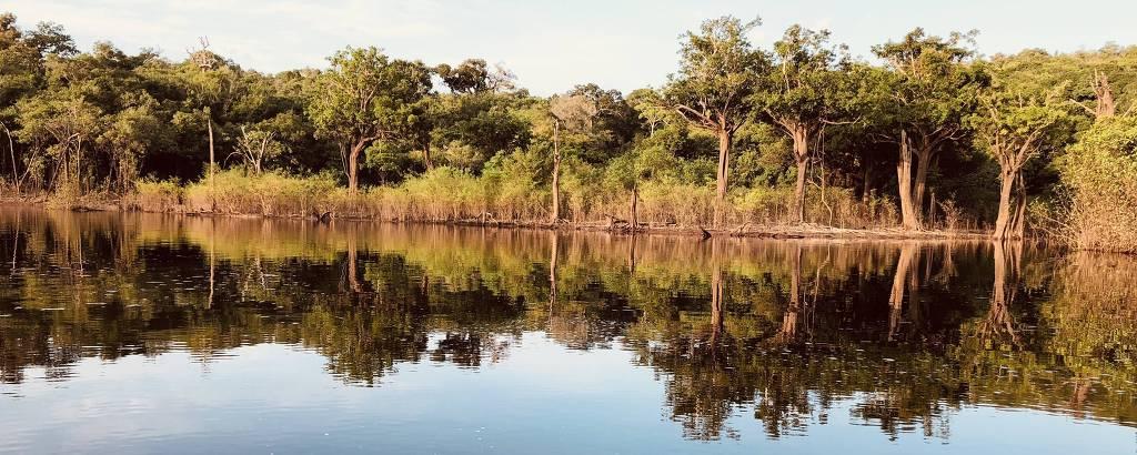 Árvores à beira do rio e refletidas na água