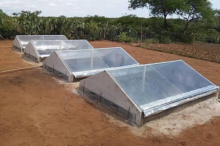 Dessanilizadores solares, tecnologia social apresentada pela Cooperativa de Trabalho Múltiplo de Apoio às Organização de Alta Promoção, de Campina Grande (PA)