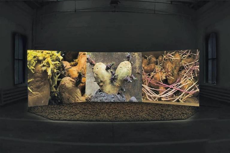 Instalação 'Patatutopia', de Agnès Varda (2003)
