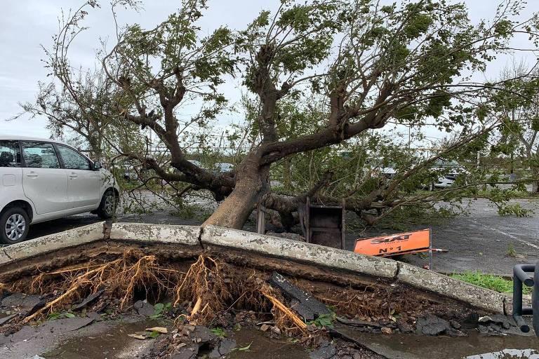 Ciclone Idai faz pelo menos 173 vítimas em Moçambique e no Zimbábue