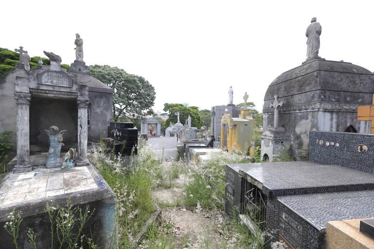 Falta de zeladoria nos cemitérios de São Paulo