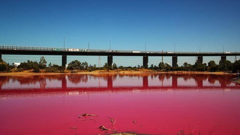 Ponte sobre lago com de rosa