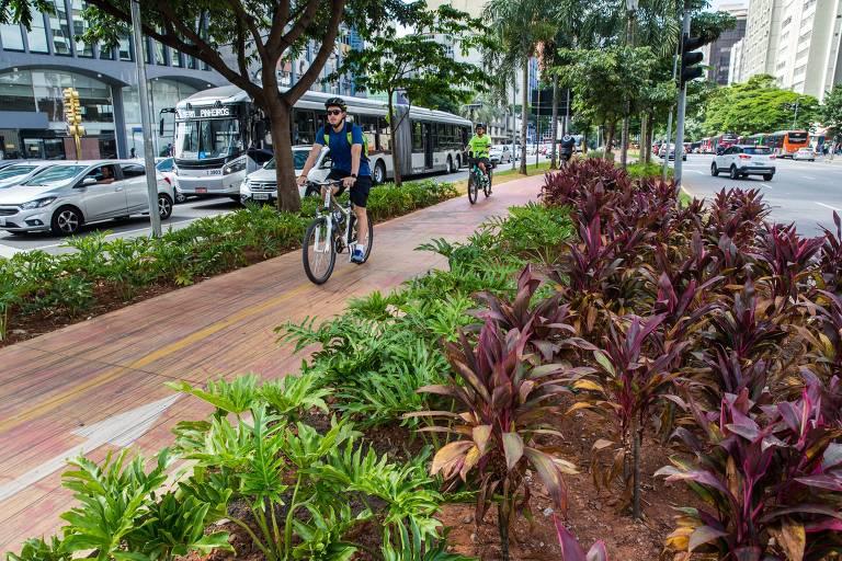 Jardim da ciclovia da avenida Faria Lima, plantado pela empresa Movida, em parceria com a Prefeitura de São Paulo