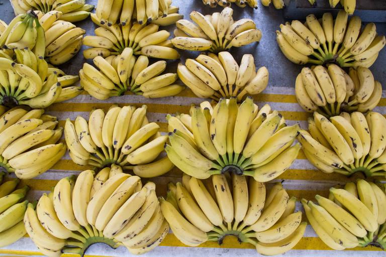 Bananas são vendidas em São Paulo