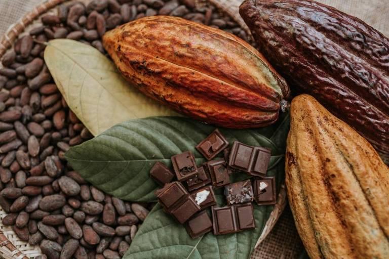 1º Chocolat Festival