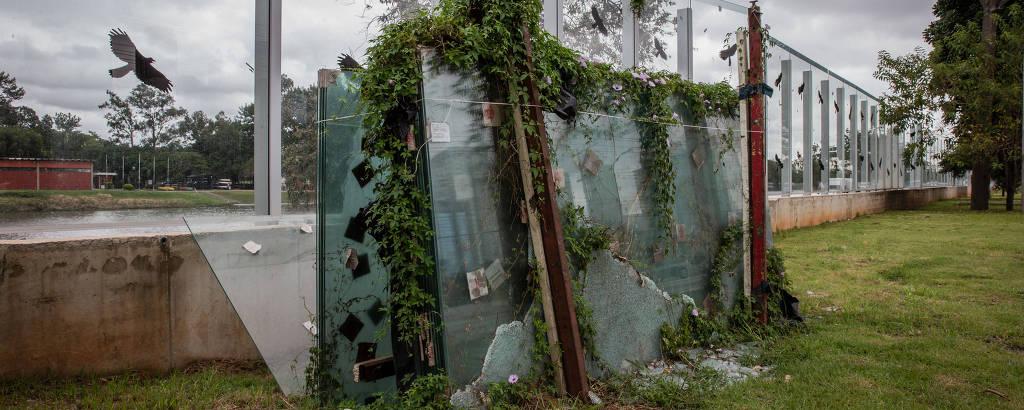 Mato alto toma conta de placas de vidro que deveriam ter sido usada para substituir peças quebradas