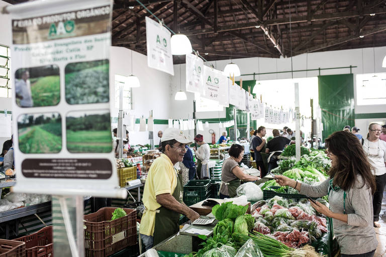 Veto de Doria a feira do MST em parque estadual gera embate político