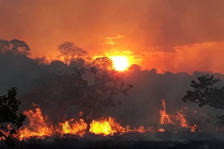 Brigadistas do Ibama combatem incêndio na Terra Indígena São Marcos, no município de Pacaraima (RR).