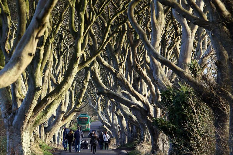 Fãs de 'Game of Thrones' se jogam em passeios por locações da série na Irlanda do Norte