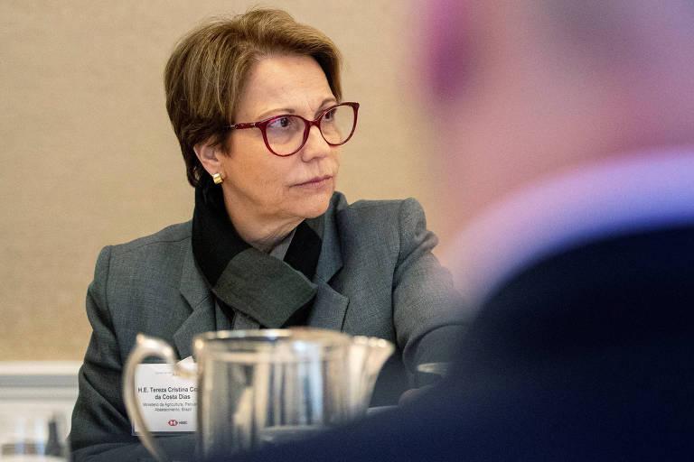 Ministra da Agricultura, Tereza Cristina, em entrevista em Nova York