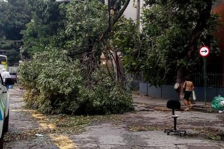 1d581ba14 Chuva deixa Rio em alerta e derruba mais de 80 árvores - 29/04/2019 ...