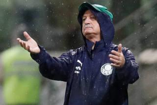 Brasileiro Championship - Palmeiras v Fortaleza