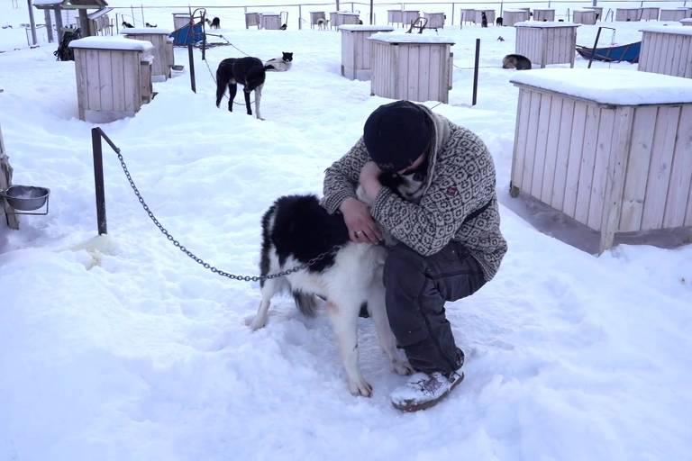 Audun e sua esposa, Mia, vivem com 110 cães no arquipélago norueguês de Svalbard