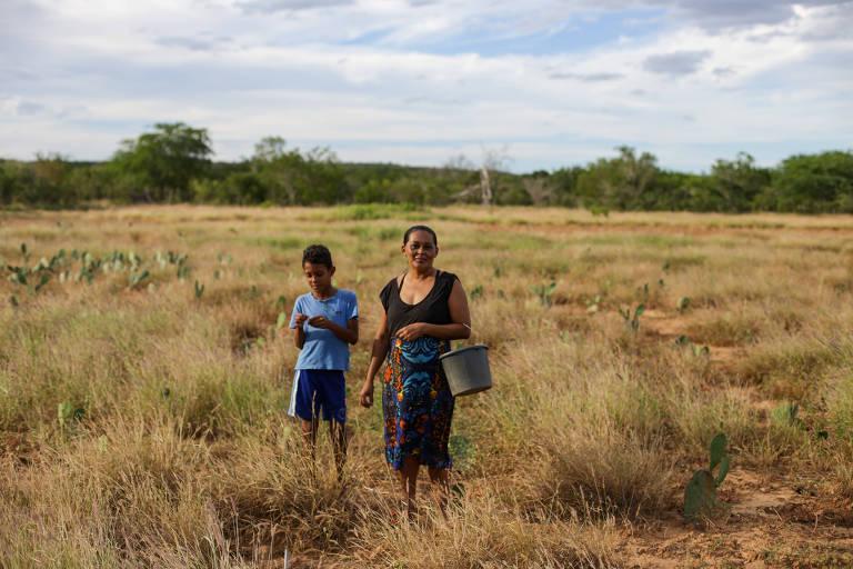 Marisa Pereira, 38, caminha em meio a vegetação, que está mais verde que o normal na região de Canudos