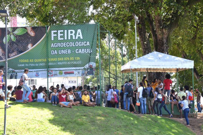 Protesto de professores da Uneb (Universidade Federal da Bahia), em abril deste ano