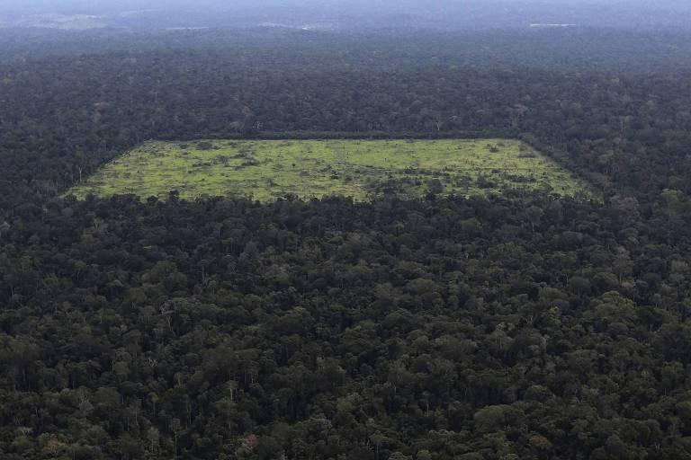 Vista aérea mostra uma área de floresta amazônica desmatada em Santarém (PA)