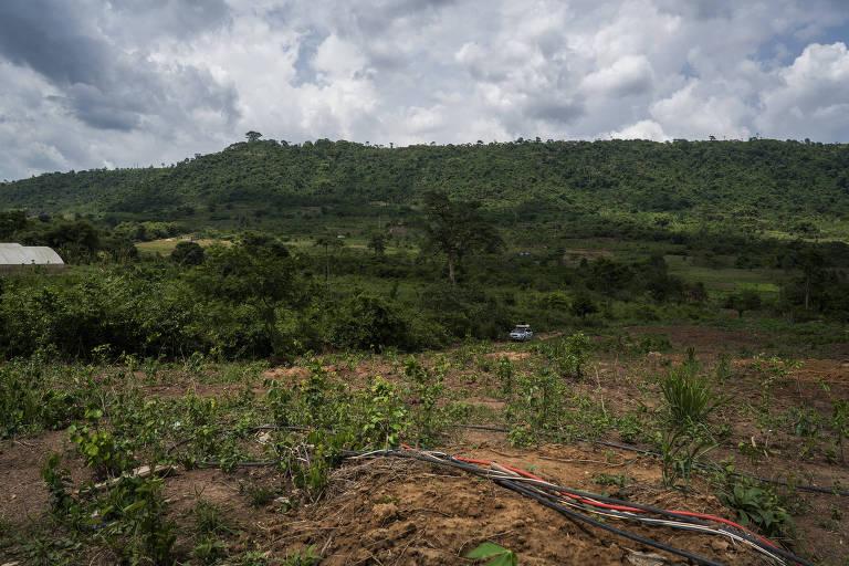 Fazenda em Aburi Agyanua, Gana