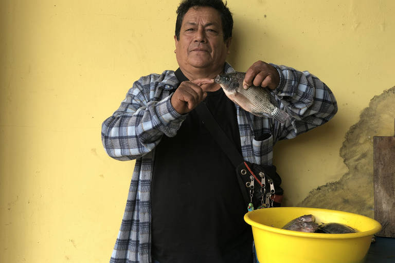 Tilápia avança na Amazônia