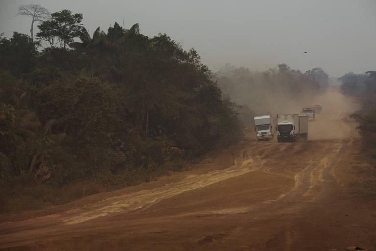 Brasil concentra retrocessos em unidades de conservação ambiental, diz estudo