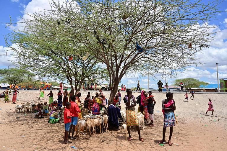 Mercado de animais no Quênia, país em que atividade de pastores responde por 12% do PIB