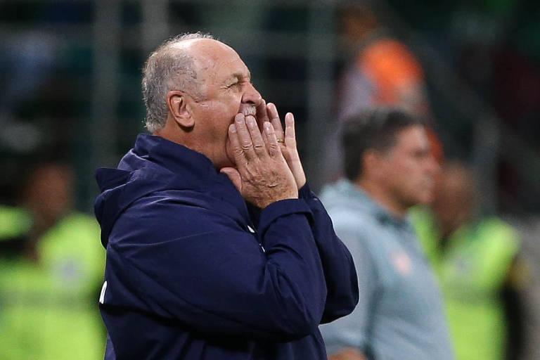 Luiz Felipe Scolari orienta o Palmeiras em partida do Brasileiro