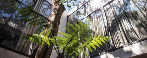 São Paulo, SP, Brasil, 31-08-2018: Vista da Casa de Vidro, da arquiteta Lina Bo Bardi, no Morumbi. (Foto: Alberto Rocha/Estúdio Folha)