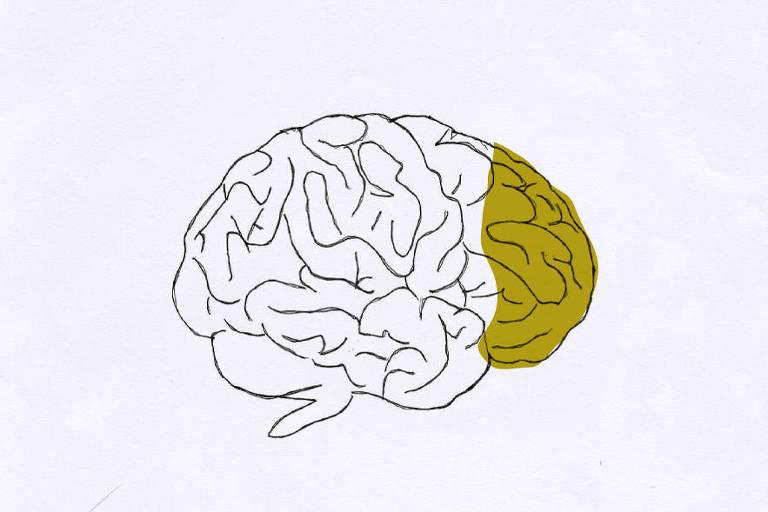 Ilustração de um cérebro, em preto e branco, visto de lado. A parte da frente do cérebro, que corresponde ao córtex pré-frontal, está demarcada com um tom esverdeado.