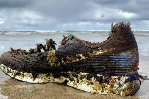 Das Bahamas à Irlanda, centenas de calçados sem dono apareceram, no ano passado, em praias, depois de terem sido levados por correntes marítimas.