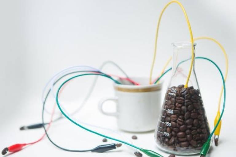 O efeito da cafeína na gordura marrom foi observado in vitro e em voluntários