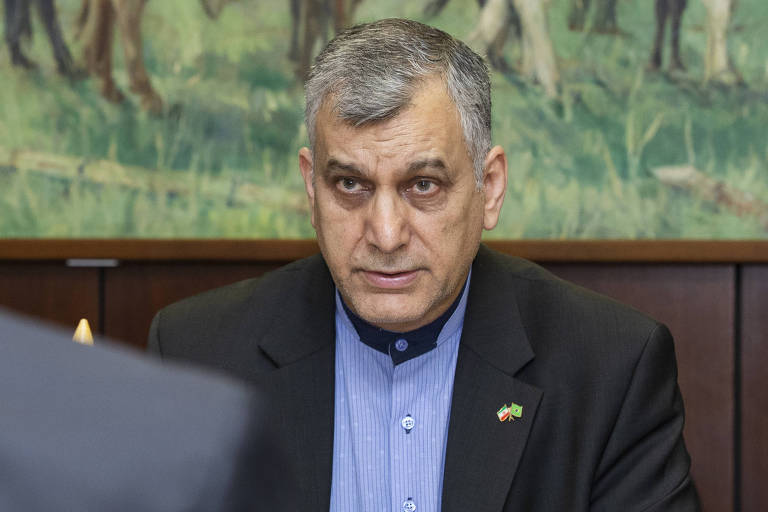 Seyed Ali Saghaeyan, embaixador do Irã , durante audiência em Brasília
