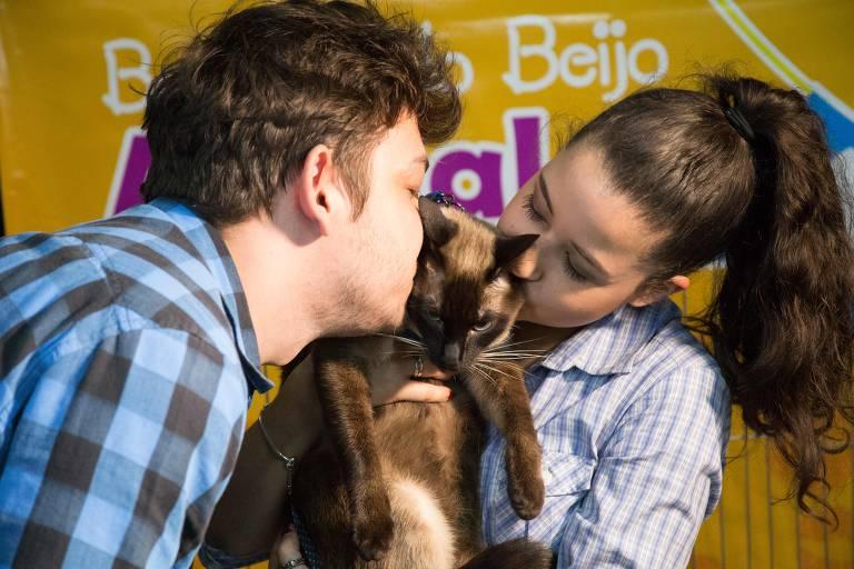 Adote um Gatinho promove quinta edição de arraial felino