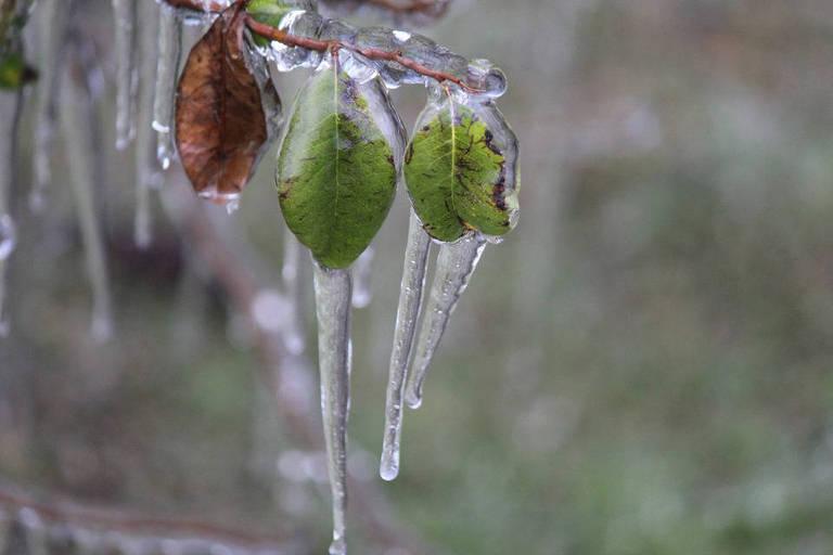 Frio no Sul