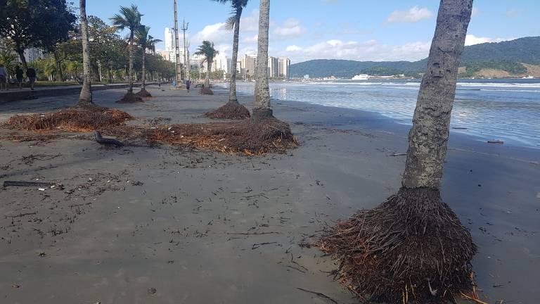 Praia de Santos é atingida por ressaca