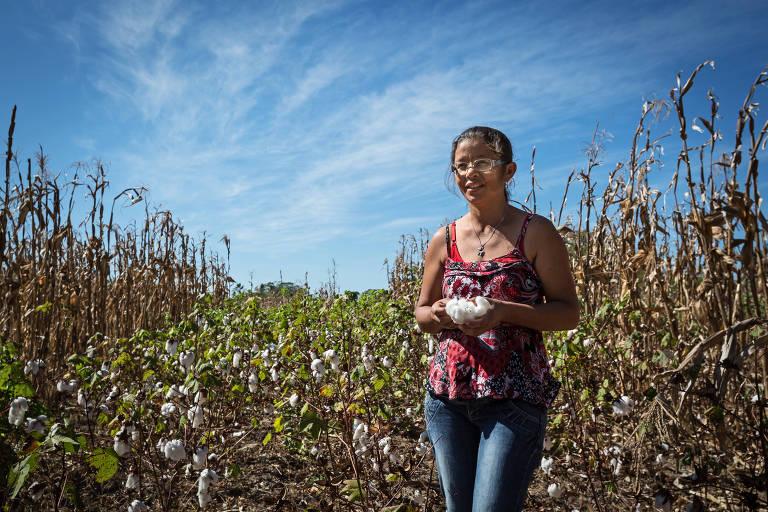 Rita Ambrosio de Melo Souza, 39, em plantação de algodão orgânico na Comunidade Irapuá, em projeto da Esplar com financiamento do Instituto C&A