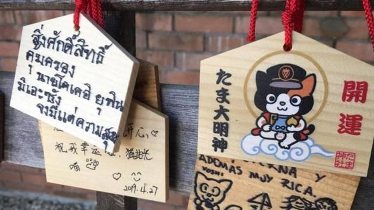 Fãs de Tama a homenagearam com flores e latas de atum na Estação Kishi
