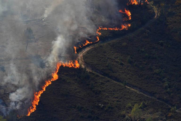 Incêndio de grandes proporções atinge o centro de Portugal
