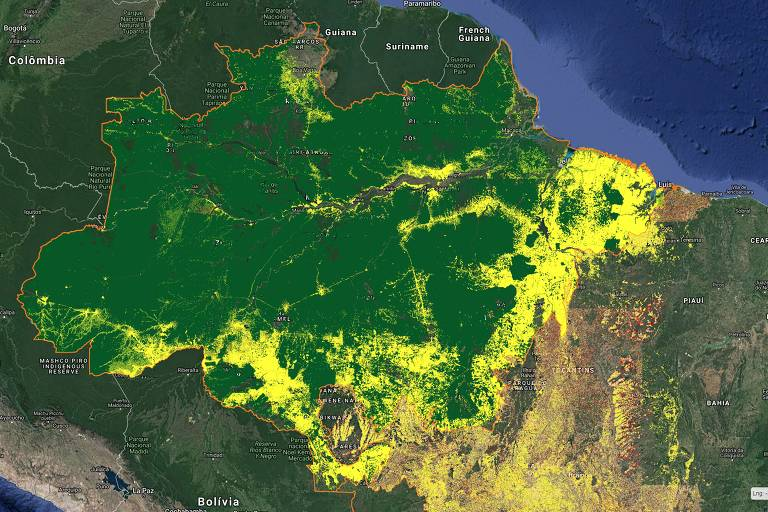 Site do Inpe com visualização do desmatamento acumulado na Amazônia