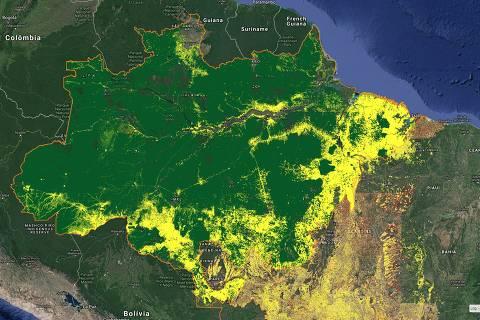 Monitorar queimadas e desmate exige recurso humano, não só satélite, dizem especialistas