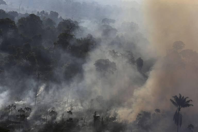 Área de Amazônia sendo queimada em área próxima a Novo Progresso, no Pará