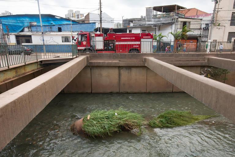 A Sabesp promete entregar o córrego do Ipiranga mais limpo até 2022; com índices mais aceitáveis de poluição, sem cheiro de esgoto e com bom aspecto