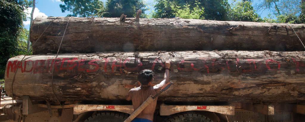 Indígenas mundurucus realizam ação contra madeireiros ilegais que atuavam dentro da Terra Indígena Sawre Muybu, no oeste do Pará