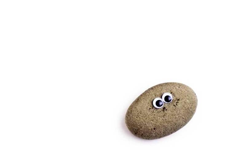 De acordo com o manual, 'pedras de estimação são fáceis de treinar' e podem aprender rapidamente a 'sentar', 'ficar no lugar' e 'se fingir de mortas'
