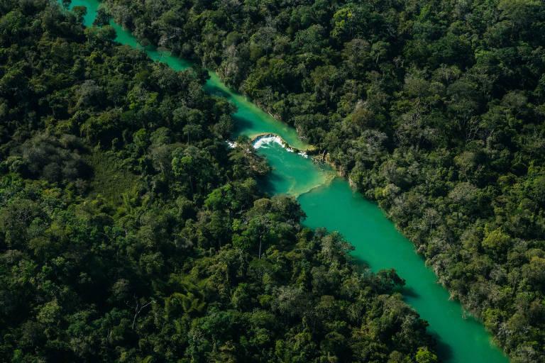 Fotógrafo registra o Pantanal de norte a sul