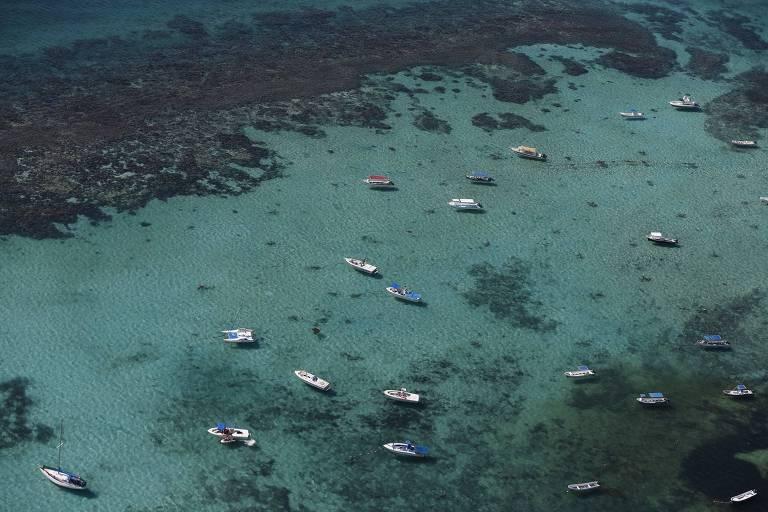 Cancún sofre com aumento de violência e invasão de algas