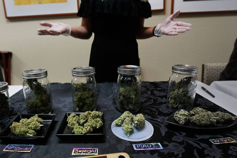 Beatriz Herrera-Rodden shows off some of her marijuana samples at the Cannabis Crown 2010 expo April 18, 2010 in Aspen, Colorado