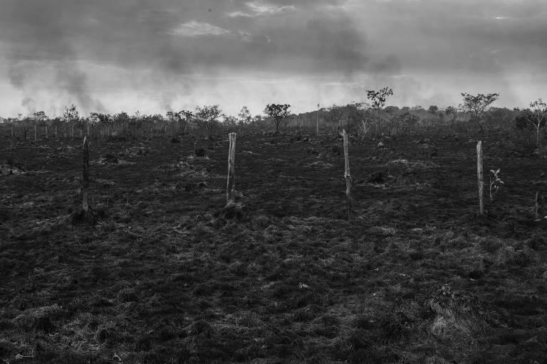 Área de pasto queimado às margens da BR-319 próximo a Humaitá, no sul do Amazonas
