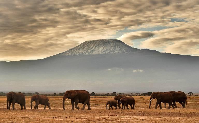 Monte Kilimanjaro é o ponto mais alto da África