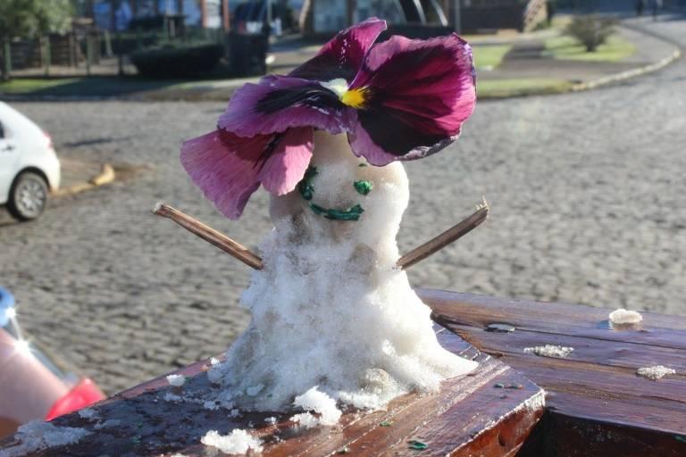 Boneco de gelo tem braços feitos com galhos e flores na cabeça
