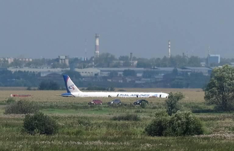 Avião russo faz pouso de emergência em milharal após colidir com pássaros
