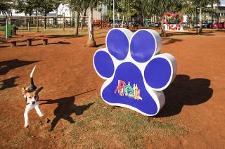ESPECIAL SHOPPINGS de Sao Paulo. Cadelinha  Bacon da raca beagle,  brinca no Pet Park do Mooca  Plaza Shopping onde cachorros podem brincar sem coleira em area ao ar livre e cercada